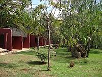 comp_amboseli-serena-lodge-www-lofty-tours-com-21_1