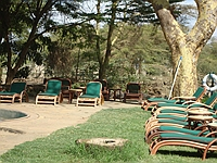 comp_amboseli-serena-lodge-www-lofty-tours-com-38