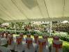 comp_weddingisland-_diani-reef-kenya-4-058728