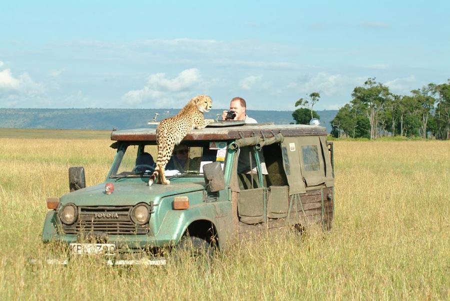 lofty_tours_geparden_safari_03