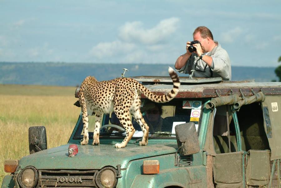 lofty_tours_geparden_safari_05