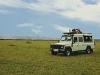 comp_safari