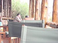 comp_tsavo-west-kilanguni-serena-lodge-www-lofty-tours-29