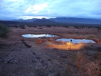 comp_tsavo-west-kilanguni-serena-lodge-www-lofty-tours-com-2
