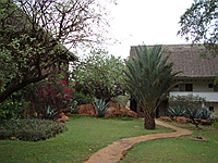 comp_tsavo-west-kilanguni-serena-lodge-www-lofty-tours-com-4