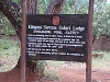 comp_tsavo-west-kilanguni-serena-lodge-www-lofty-tours-10