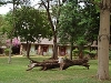 comp_tsavo-west-kilanguni-serena-lodge-www-lofty-tours-com-6