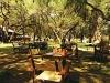 comp_garden_lunch
