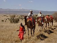 comp_lewa-wilderness-camel-walk