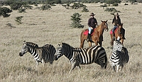 comp_lewa-wilderness-trails-riding-2