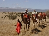 comp_lewa-wilderness-camel-walk