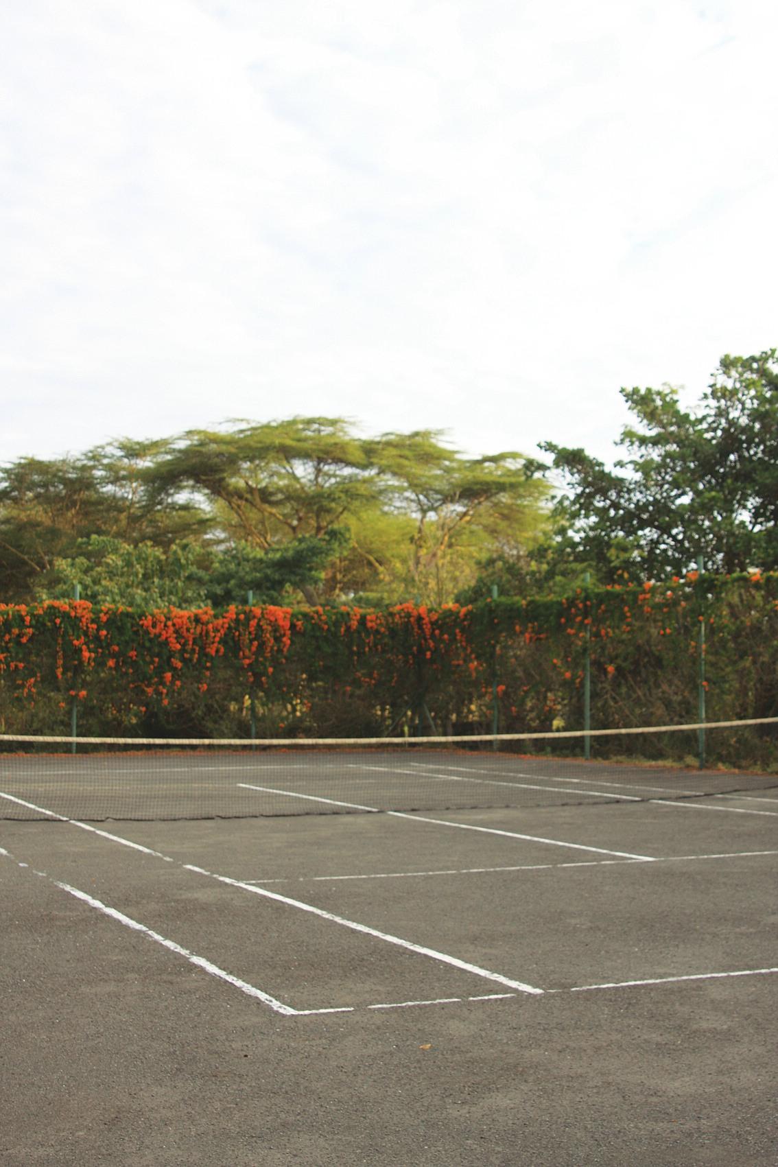 comp_tennis