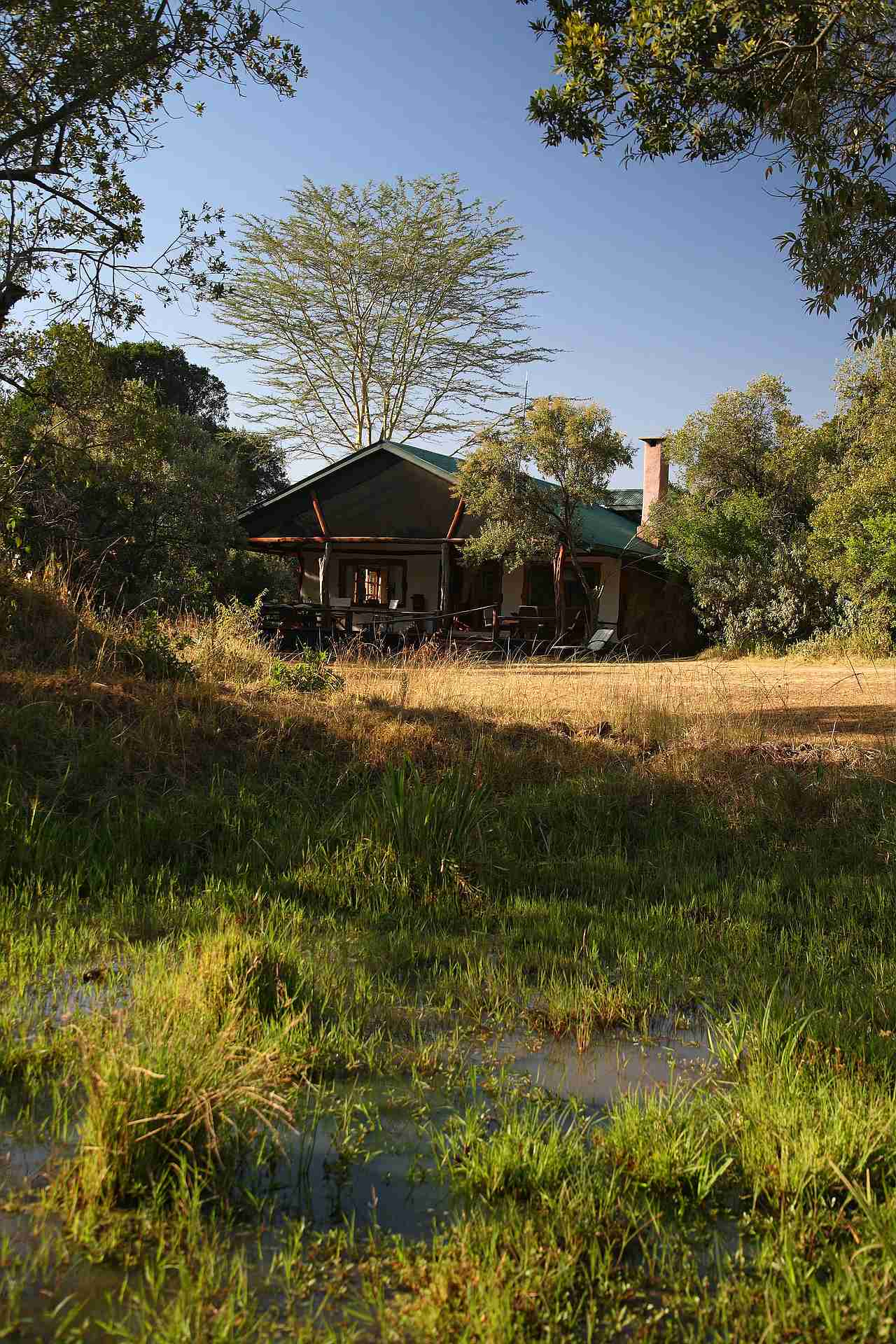 comp_looking-back-at-house-from-waterhole-acacia-house