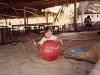 comp_robinson-island-shamshu-family-19910018