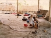 comp_robinson-island-shamshu-family-19910019