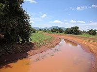 comp_tsavo-east-www-lofty-tours-com-5