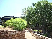 comp_voi-safari-lodge-view-www-lofty-tours-com-5