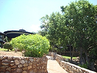 comp_voi-safari-lodge-view-www-lofty-tours-com-5_0